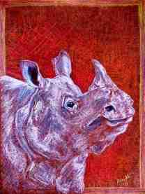 rhino/Prisma