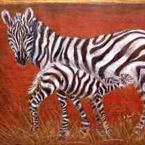 zebras/Prisma