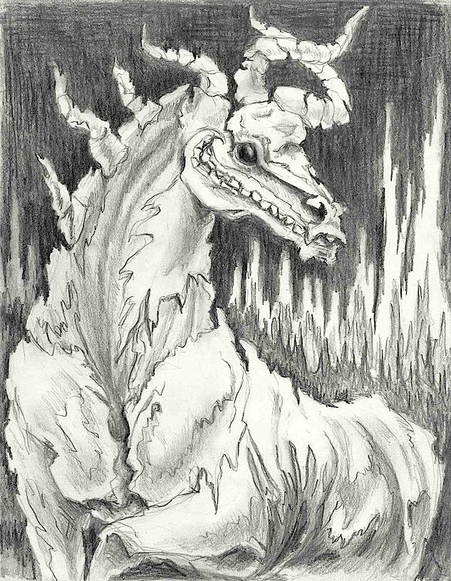 stallion skeleton